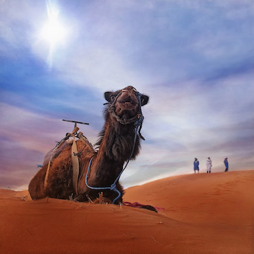 Booking Fez to Marrakech via Merzouga 3 days desert tour